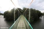 Canopy walkway [costa_rica_la_selva_0857]