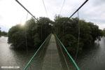 Canopy walkway [costa_rica_la_selva_0860]