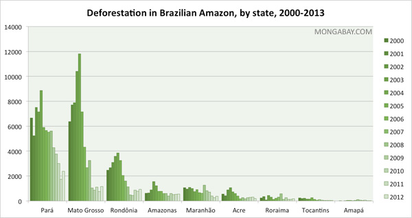 State deforestation in the Brazilian Amazon