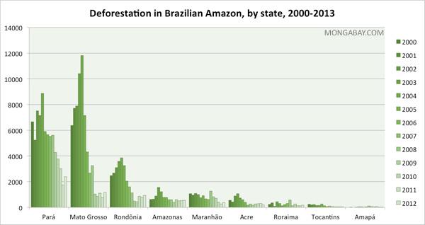 State deforestation in the Brazilian Amazon