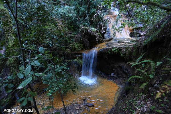 Berry Creek Falls [ca_big_basin_00153]