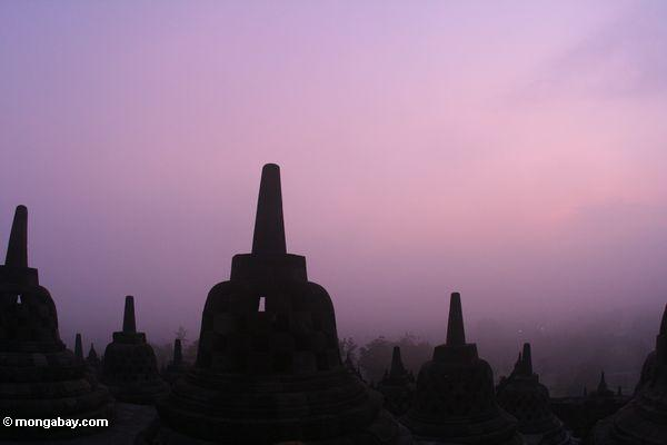 Stupas at sunrise (Java)