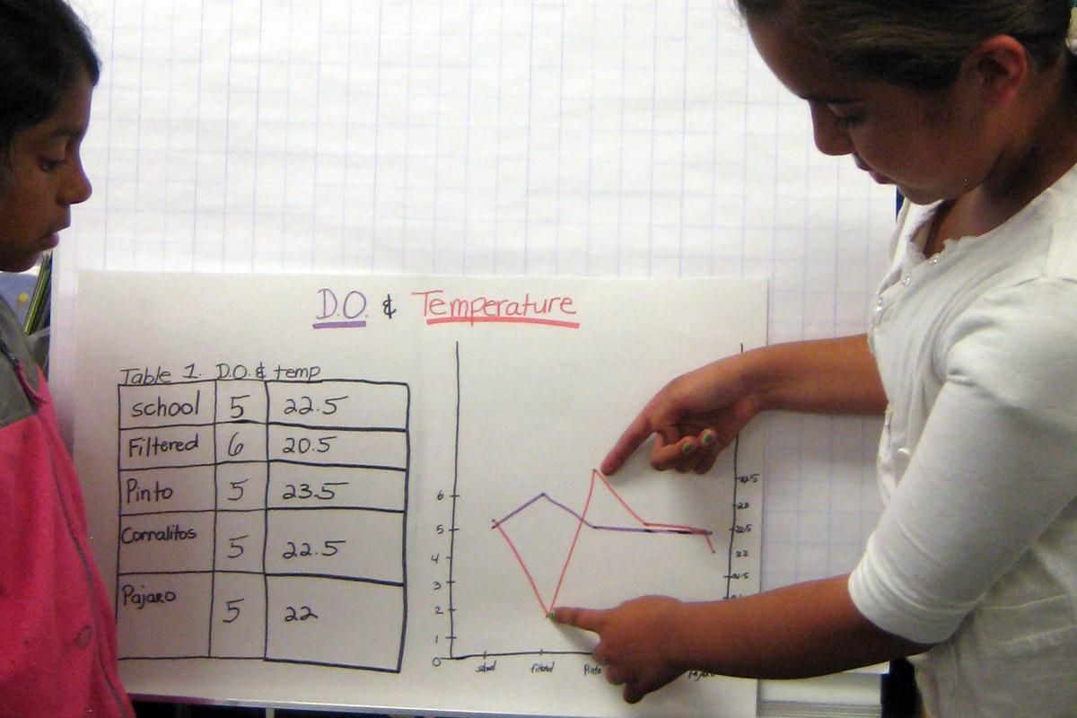 Scientific inquiry activity