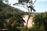 View of the Tembeling River and surrounding rainforest