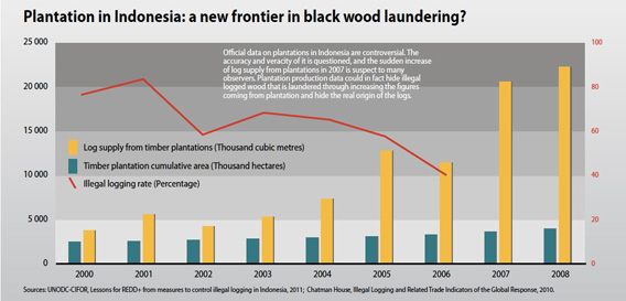 Plantation in Indonesia: a new frontier in black wood laundering?