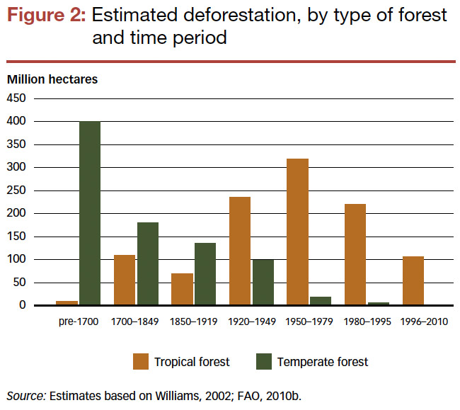 Deforestation Estimates