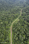 Logging road in Malaysian Borneo (Nov 2012). Photo by Rhett A. Butler