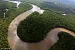 Kinabatangan River, Sabah, Malaysia (Nov 2012). Photo by Rhett A. Butler