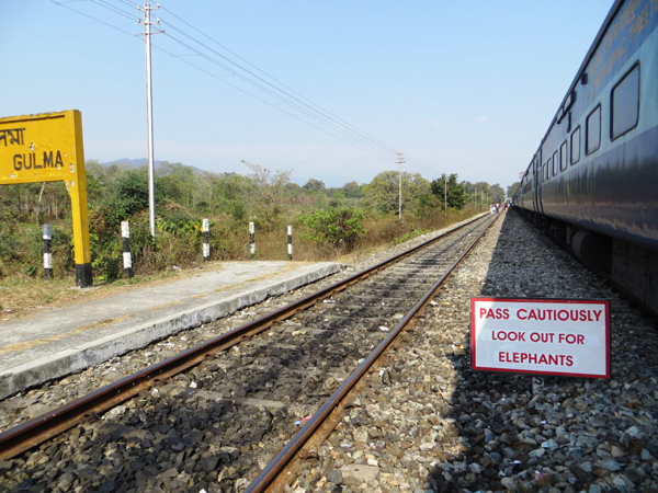 Elephant caution signboard at Gulma railway station.  Photo by Shreya Dasgupta.