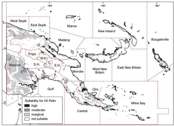 Palm oil licenses provide cover for logging in New Guinea