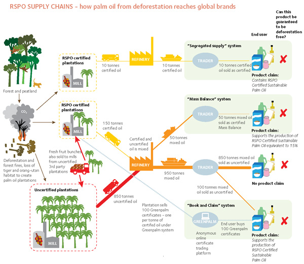 Greenpeace's chart showing the current state of palm oil production in Indonesia