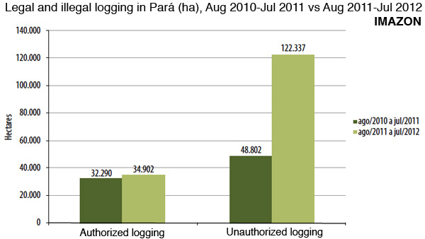 illegal logging in Para