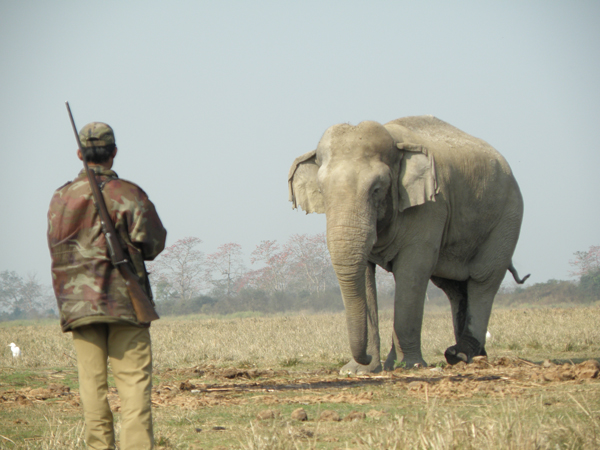 Deepak Saikia, a forest guard at Kaziranga having a