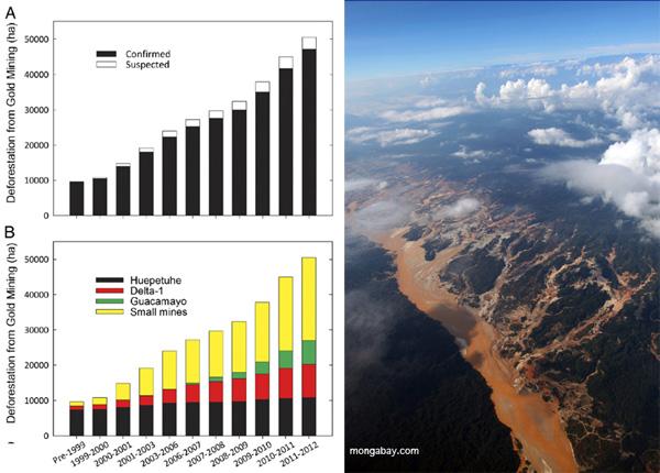 左:(A)金採鉱が直接の原因で消失したと確認された、またはその疑いのあるマドレデディオス県南部の1999年から2012年の間の森林消失 (B)1999年から2012年における小さな鉱山と比較した三つの大きな鉱山の森林消失貢献度  2013 年アスナーらの許可により転載 右:ペルーアマゾンの金採鉱 写真Rhett A. Butler