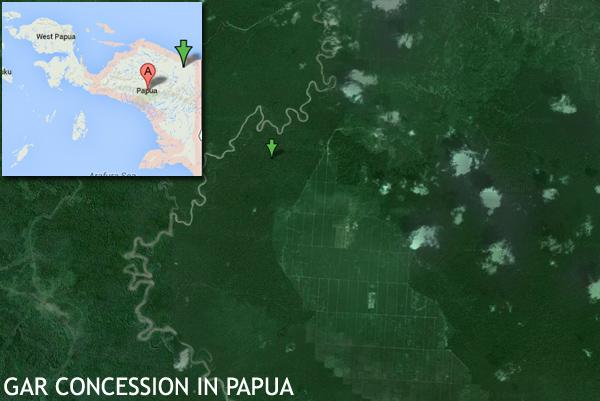 Plantación actual de GAR, así como también la concesión forestal de esta empresa en la provincia de Papúa. Papúa es vista como el próximo desafío para la expansión de la palma aceitera en Indonesia