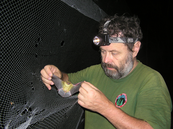 El Prof. Jaroslav Cervený, investigador en el proyecto de Senegal del Instituto de Biología de los Vertebrados en Brno, recoge una captura. Imagen por cortesía del Prof. of Prof. Jaroslav Cervený.