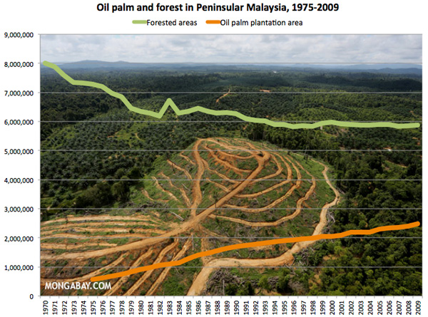 Oil palm plantation area and forested area (ha) in Peninsular Malaysia, 1975-2009