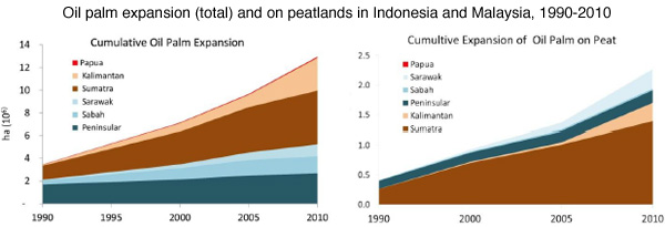 Desenvolvimento das plantações de óleo de palma nas turfeiras da Indonésia e Malásia entre 1990 e 2010