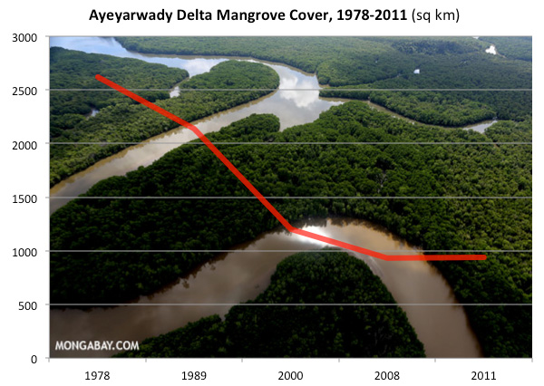 Mangrove area statistics for the Ayeyarwady Delta, Myanmar