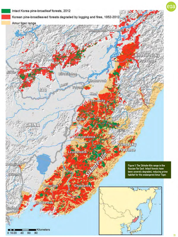 Map: Impact of logging in the Russian Far East