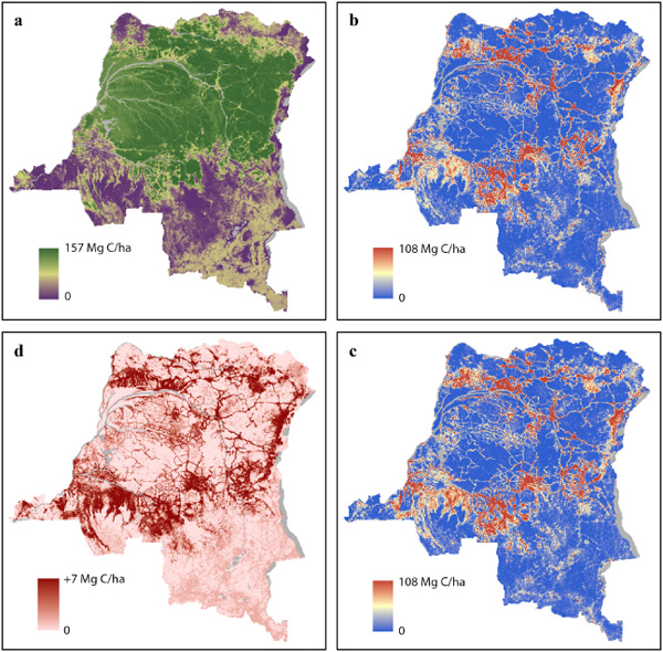 Forest type and strata averages, aggregated to a 5-km grid: (a) year 2000 AGC; (b) map-scale estimate of 2000–2010 gross AGC loss; (c) sub-grid estimate of 2000–2010 AGC loss; (d) difference between sub-grid and map-scale estimates. Water bodies are shown in gray. Note that AGC values for both (b) and (c) are the same for the respective forest types.