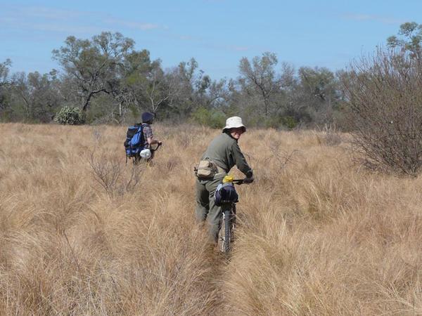 Verónica Quiroga y el veterinario Juan Arrabal comprobando los rastros en el Parque Nacional Copo. Foto cortesía de Verónica Quiroga.
