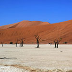 Deadvlei in Namibia
