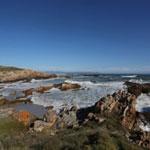 south_africa_hermanus_0536