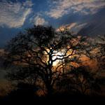 Sunset near Kruger National Park, South Africa