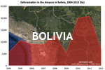 Chart showing annual deforestation in Bolivia's Amazon rainforest territory between 2004 and 2012