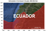 Chart showing annual deforestation in Ecuador's Amazon rainforest territory between 2004 and 2012