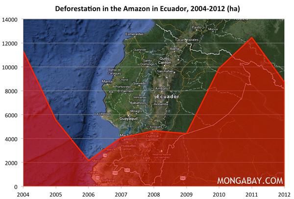 Chart: Deforestation in the Amazon in Ecuador