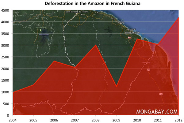 Chart: Deforestation in the Amazon in French Guiana