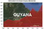Chart showing annual deforestation in Guyana's Amazon rainforest territory between 2004 and 2012