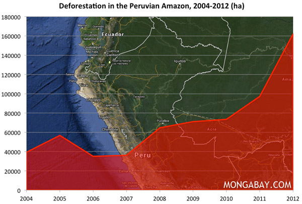 Chart: Deforestation in the Amazon in Peru