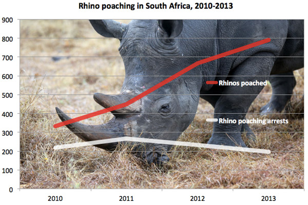 Rhino poaching stats for South Africa.