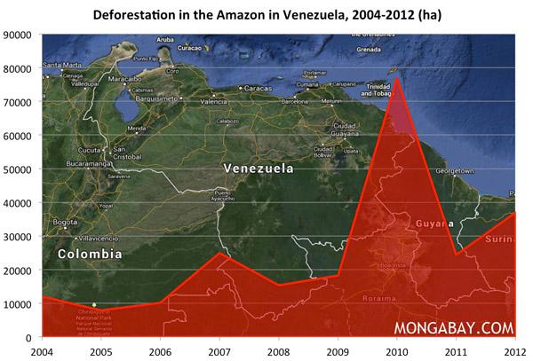 Chart: Deforestation in the Amazon in Venezuela