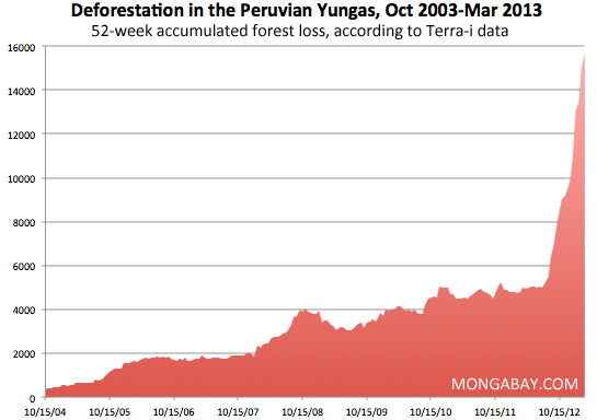 Deforestation rate in the Yungas ecoregion in Peru