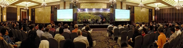 APP One Year Forest Conservation Policy Anniversary