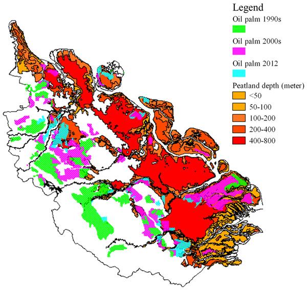 Oil palm development on peatlands