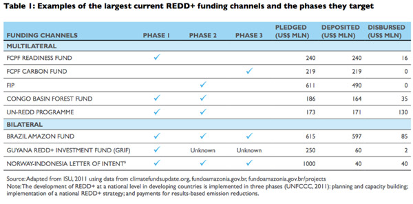 Examples of the largest current REDD+ funding channels and the phases they target