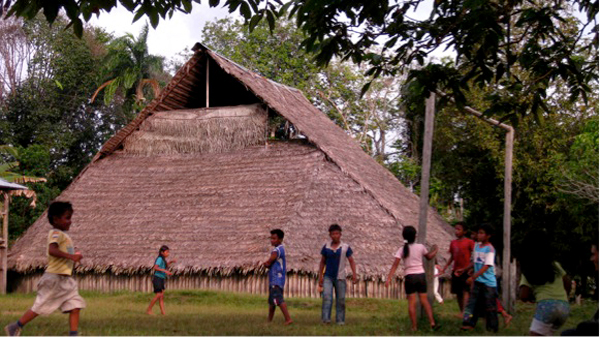 The roof of this traditional roundhouse in the Colombian Amazon is thatched with the pui palm (Lepidocaryum tenue). Photo credit: Rodrigo Cámara-Leret