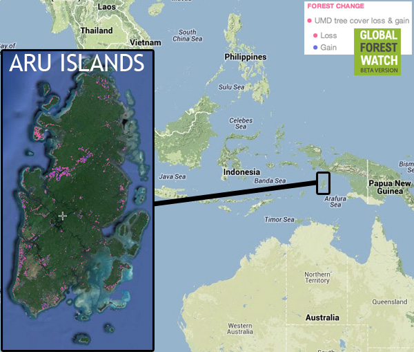 Aru Islands. Courtesy of Global Forest Watch.