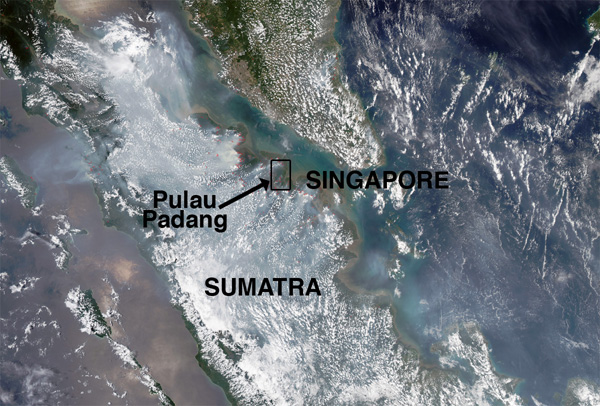 This image, taken on March 7, 2014, by the Moderate Resolution Imaging Spectroradiometer (MODIS) on NASA's Aqua satellite, shows fires outlined in red.