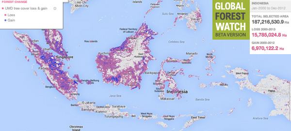 Global Forest Watch map showing forest loss and gain in Indonesia between 2000 and 2012.