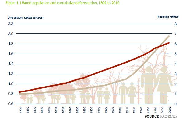 Deforestación acumulada y crecimiento de la población. Cortesía de UNREDD.