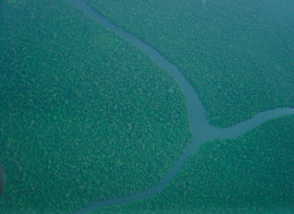 Aerial view of the Amazon rainforest. Photo by: Tim Baker.