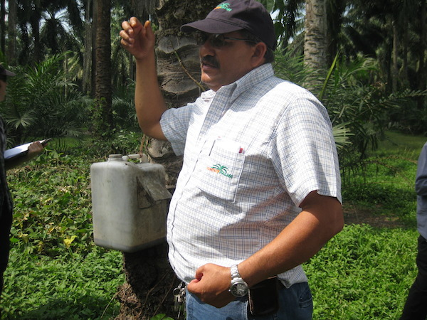 David Reyes,  Hondupalma agricultural manager,  explains how horned beetle traps work. Photo by Tanya Dimitrova.