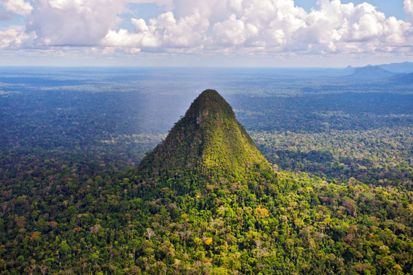 Volcanic rainforest cone and landscape in Sierra del Divisor