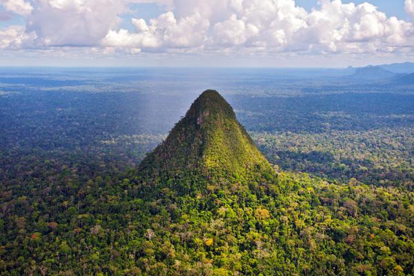 Cono y paisaje de selva tropical volcánicos en Sierra del Divisor. Fotografía de Diego Pérez
